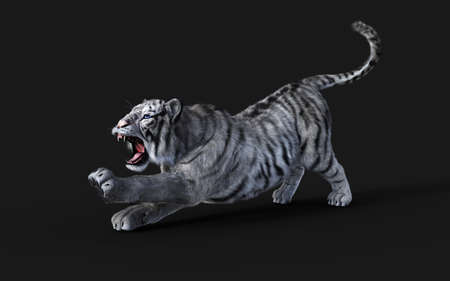 Dangerous White Bengal tiger Isolated on Dark Background with Clipping Path. 3d Illustration. Reklamní fotografie - 153240621