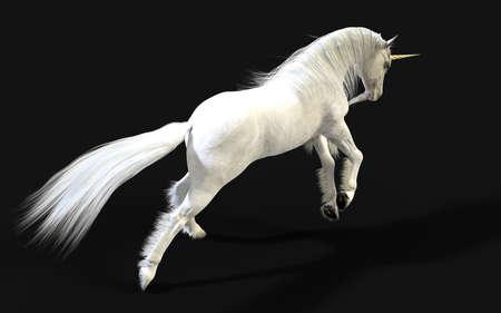 3d Illustration Mythical White Unicorn Posing Isolate on Dark Background
