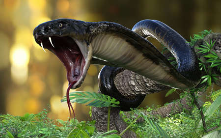 King Cobra (Ophiophagus hannah) The world's longest venomous snake with Clipping Path, King Cobra Snake, 3d Illustration, 3d Rendering