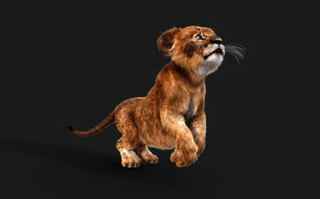 3d Illustration Portrait of Little Lion Cub Isolated on Dark Background