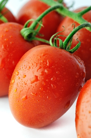 Piccadilly tomato, shallow DOF (depth of field). Piccadilly is a plum tomato variety. Plum tomatoes are full and rich in pulp. They are high in sugar content and do not burst on cutting so they can be sliced horizontally or across (producing cubes or roun photo