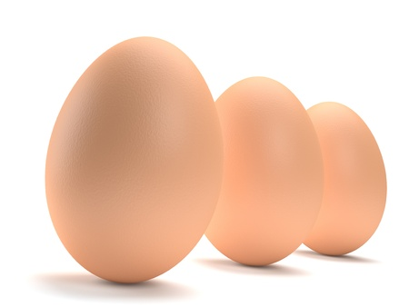 Three brown eggs in a row isolated on white background  Computer generated image with multiple clipping paths photo