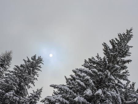 snowfall: Snowfall Orobie Alps Stock Photo