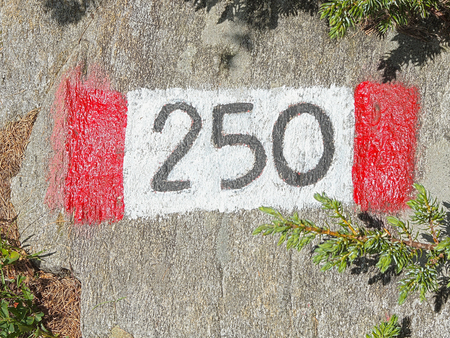 forest path: Mountain trail marker, number 250, Orobie Alps.