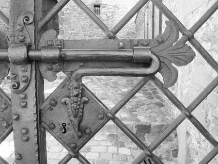 Aristocratic coat of arms is an antique door