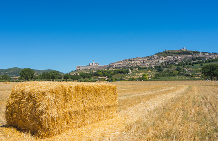 Assisi, one of the most beautiful small town in Italy. Skyline of the village from the land