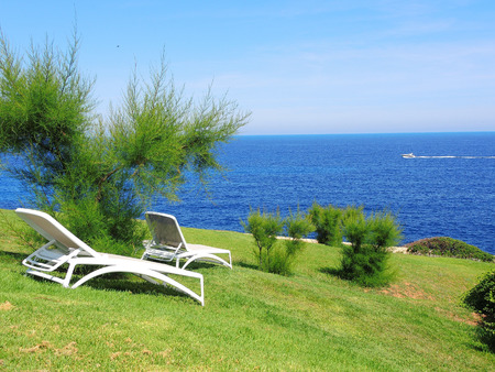 Sun loungers on a green background