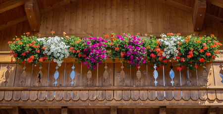 Traditional flowered balcony at the Italian Alps and dolomites