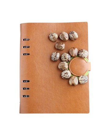 Rubber seeds with Leather Notebook isolated on white background photo