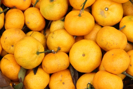Plenty of tangerines, for sale on a market stall in Thailand Stock Photo - 16608376