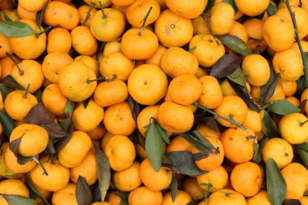 Plenty of tangerines, for sale on a market stall in Thailand  Stock Photo - 16608383