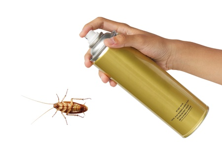 insecticide: Cockroach spray with spray cans over white background