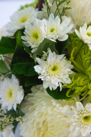 An arrangement of white chrysanthemums in wooden basket
