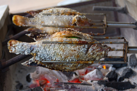 Grilled tilapia fish salted on stove