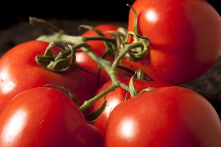 sidelight: Group of Tomatoes