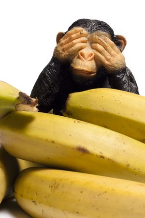Monkey on a Diet Stock Photo - 6765375