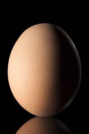 sidelight: Brown Egg on Black Background