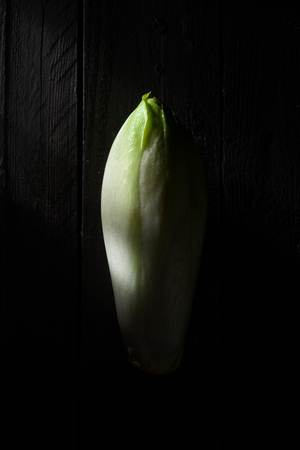 endive: Belgian Endive on Black Wood