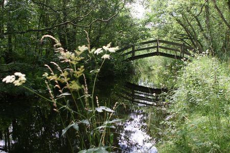 An old bridge crossing in the Norfolk Broads