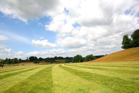 sussex: A newly mown field in Sussex