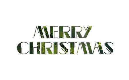 festiveness: merry christmas
