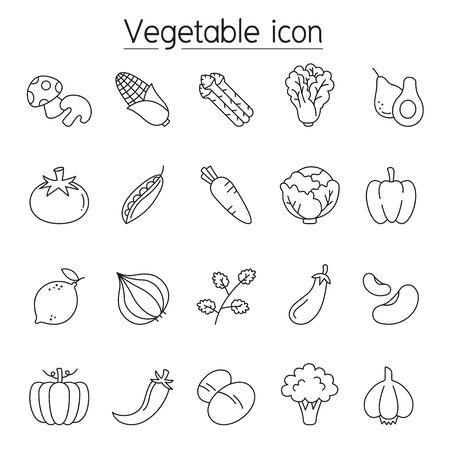 Vegetable icon set in thin line style Stock Illustratie