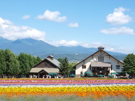 small houses at Tomita farm in Furano, Hokkaido, Japan.
