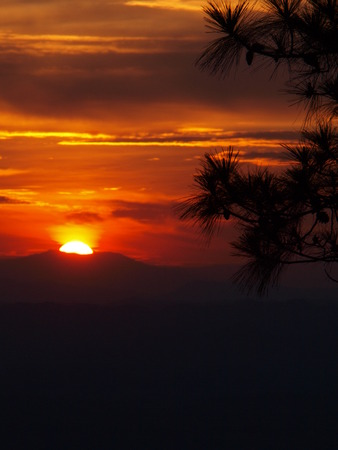 phukradueng: Sunset at cliff, with silhouettes of tree on Pha Lom Sak cliff - location: Phukradueng, Loei province, Thailand. (long exposure)