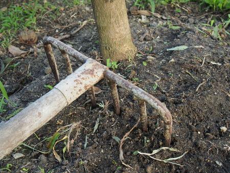 harrow: hand metal harrow on the ground.
