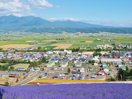 The city & lavender field view on the mountain at Furano, Hokkaido - Japan.