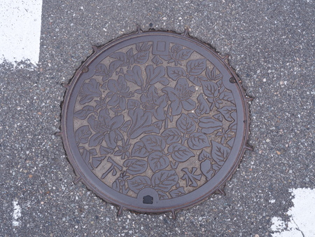manhole cover: GIFU, JAPAN - NOVEMBER 17, 2015: A manhole cover of Takayama, Gifu Prefecture, Japan. Rhododendron reticulatum engraved on to a manhole cover as symbolic for the city of Takayama. Editorial