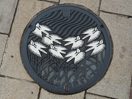 manhole cover: HIMEJI, JAPAN - NOVEMBER 19, 2015: A manhole cover in Himeji, Japan. Pecteilis Radiata engraved on to a manhole cover as one of Himeji citys important symbols.