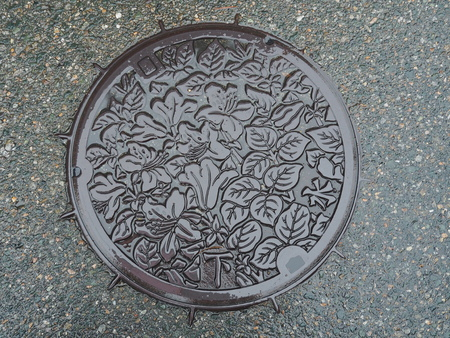 gifu: GIFU, JAPAN - NOVEMBER 17, 2015: A manhole cover of Takayama, Gifu Prefecture, Japan. Rhododendron reticulatum engraved on to a manhole cover as symbolic for the city of Takayama. Editorial