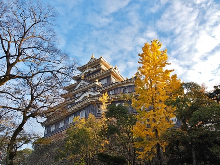 okayama: Okayama Castle and ginkgo tree with blue sky in the city of Okayama in Okayama Prefecture, Japan. The castle is frequently known as Crow Castle U-jo because of its black exterior.