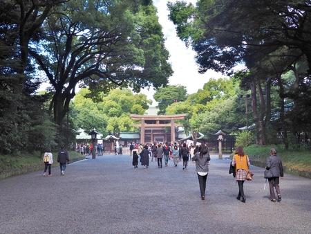 shinto: TOKYO, JAPAN - NOVEMBER 15, 2015: Tourists walking to wooden Torii Gate of Meiji-jingu shrine in Tokyo, Japan. Meiji Jingu is a Shinto shrine, Shinto is called Japans ancient original religion.
