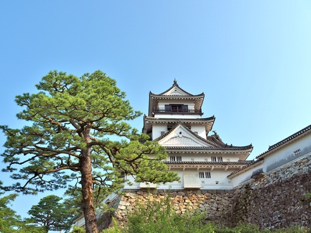 Kochi Castle is a Japanese castle in Kochi, Kochi Prefecture, Japan. Kochi Castle is a hilltop castle that was built by Yamanouchi Kazutoyo in 1601 and was completed in 1611.