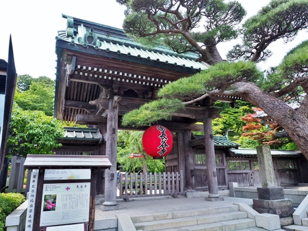 Kamakura, Japan - June 9, 2017: The Sammon gate, main gate of Hasedera Temple, Buddhist temple in the city of Kamakura in Kanagawa Prefecture, Japan. Sammon gate well known red lantern temple gate.