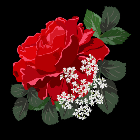 Beautiful red rose. Decor elements for greeting cards, wedding invitations, birthday and other celebrations. Isolated on black background.