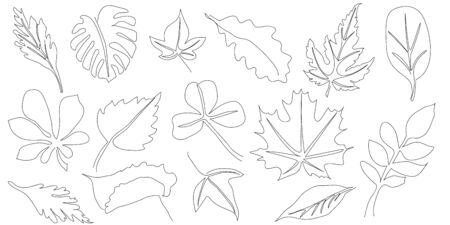 Set of hand drawn scribble leaves. Collection of leaves of different plants in doddles style. Design element. Continuous line. Vector. Isolated on white background.
