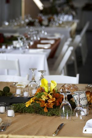 receptions: table setting for a wedding or dinner event Stock Photo