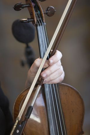 stringed instrument: A violin being held. The fingers show extreme use of this stringed instrument