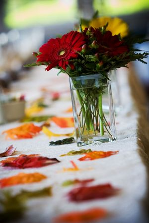 Detail from a wedding table, bouquet of flowers - this has a very shallow depth of field! Stock Photo