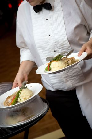 catered: food being served by a waiter during a wedding or catered social event