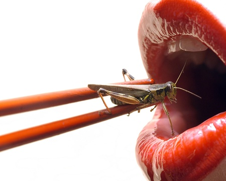 a wacky take on sushi, red lips getting ready to eat a live grasshopper with chopsticks