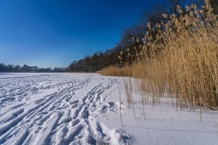 frozen rural lakeside
