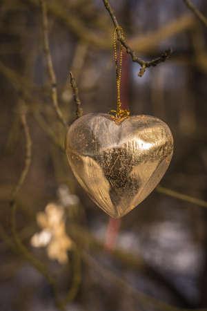 golden heart on a tree Standard-Bild