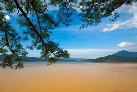 Thung Lung Vang (Golden Valley) - Da Lat - Vietnam. Stockfoto