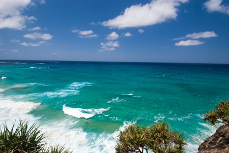Stradbroke Island Beach - Queendsland - Australia blue sky, clear day, a small tropical tree on the rock in the front