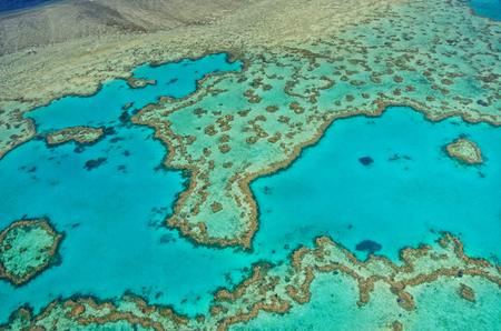 barrera: Gran Barrera de Coral - Vista aérea - Whitsundays, Queensland, Australia