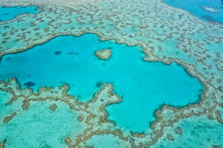 corales marinos: Gran Barrera de Coral - Vista aérea - Whitsundays, Queensland, Australia